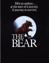 Ayı – The Bear 1988 Türkçe Dublaj izle