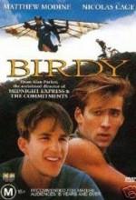 Birdy Türkçe Dublaj izle