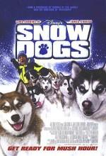 Kar Köpekleri – Snow Dogs 2002 Türkçe Dublaj izle